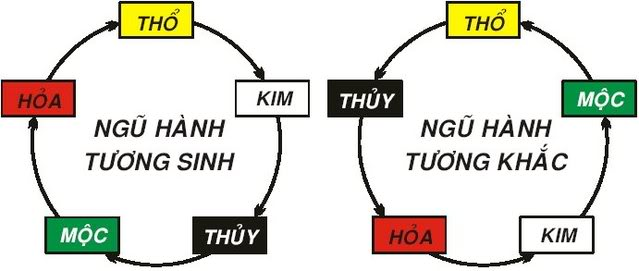 What is the Five Elements Theory